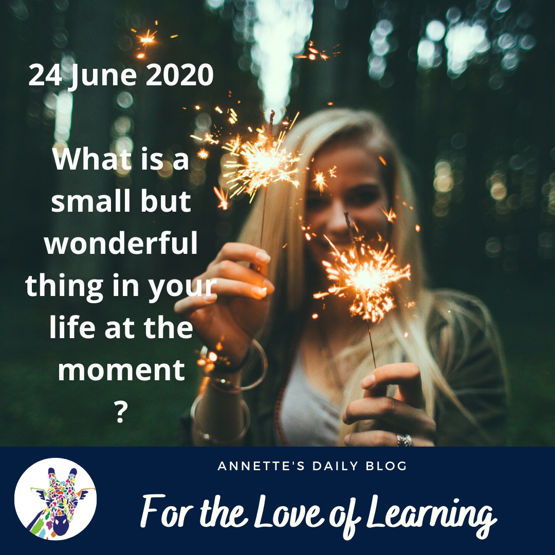 For the Love of Learning, 24 June 2020 : What is a Small, But Wonderful Thing in Your Life at the Moment?